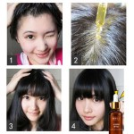 Gentle Care Hair Treatment Oil (Pack of 4 pieces) + FREE HAIR WONDER CREAM